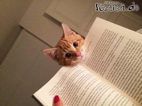 Liest du schon wieder?