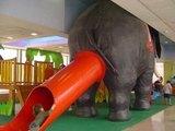 Elefanten-Rutsche