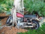 Mal kurz das Moped abgestellt