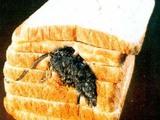 Maus im Toast