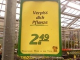 Verpiss dich Pflanze