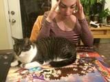 Katzenbesitzer