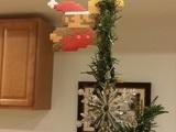 Marios Weihnachtsstern
