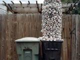 Müllmann verspätet sich leicht