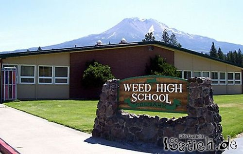 Weed High School