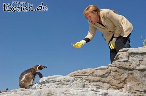 Merkel mit Pinguin