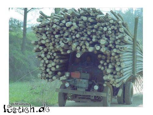 Holztransport in Asien