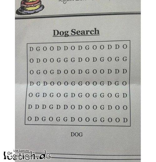 Dog-Suche