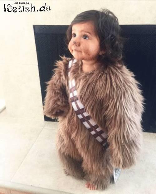 Kleiner Chewie