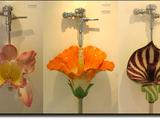 Blumen-Toilette
