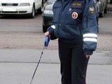 Süßer Polizeihund