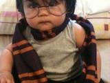 Kleiner Harry