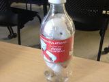 Bär in der Flasche