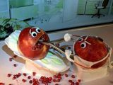Granatapfel-Op