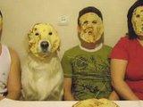Pfannkuchenfamilie